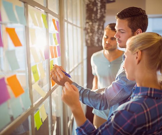 Dossier Ciclo superior marketing y publicidad